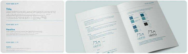 Corporate Style Guide Design